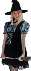 DRESS FANTASTIC ADULTS MAGIC SPELL WITCH COSTUMES image