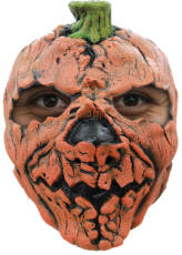 Pumpkin Face Mask image
