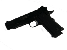 Nighthawk Custom RECON image